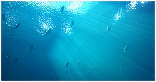自然界の水質とは・・・